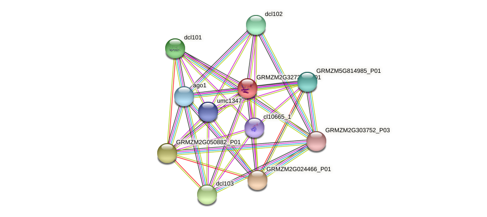 GRMZM2G327247_P01 protein (Zea mays) - STRING interaction network