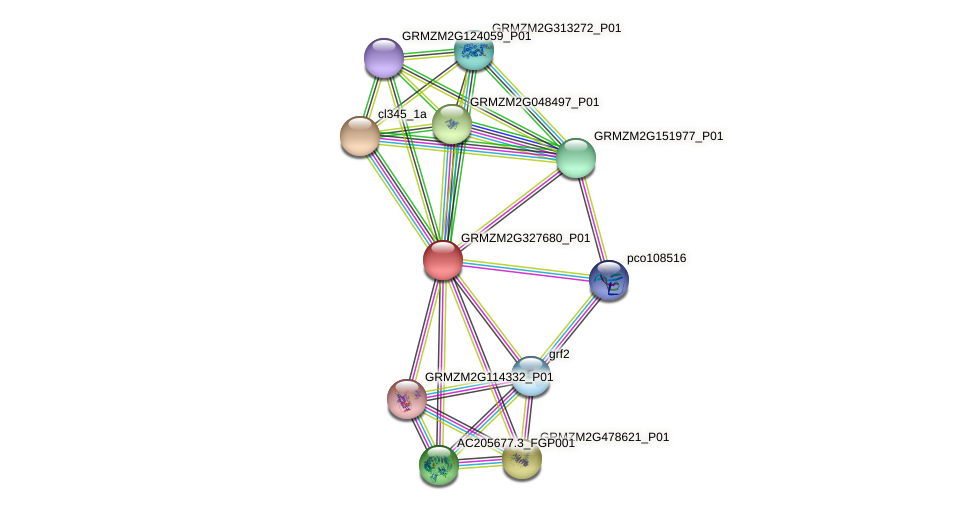 GRMZM2G327680_P01 protein (Zea mays) - STRING interaction network