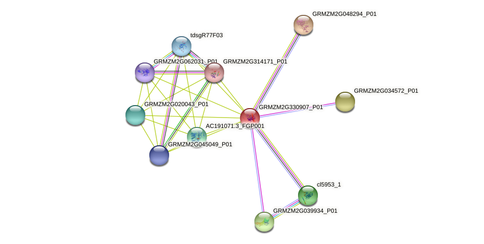 ltk2 protein (Zea mays) - STRING interaction network