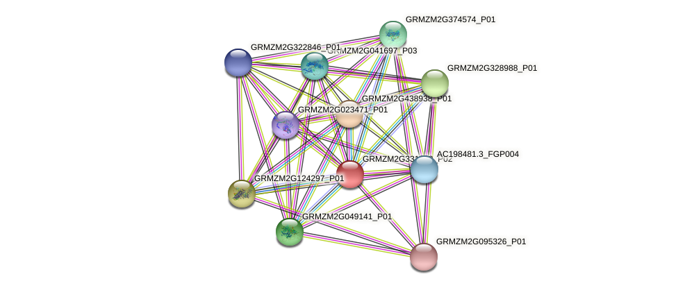 GRMZM2G331368_P02 protein (Zea mays) - STRING interaction network