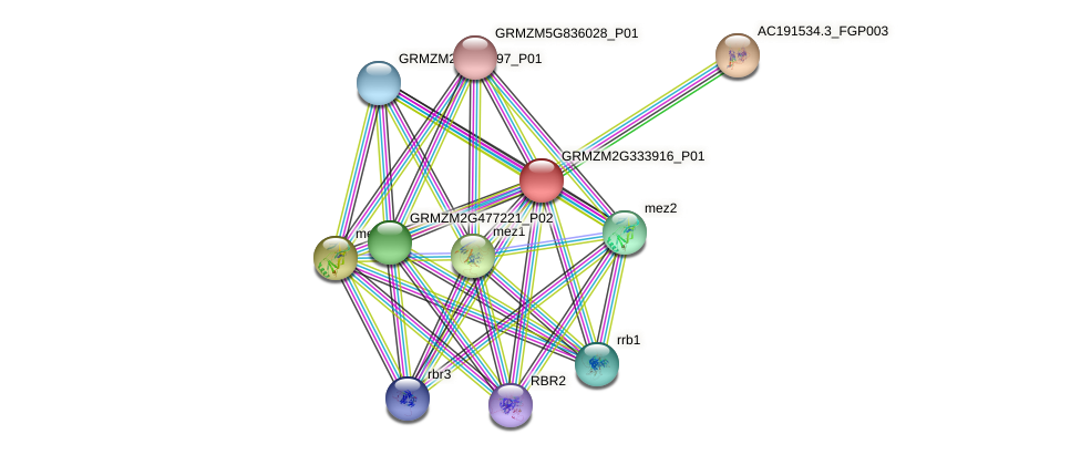 dmt101 protein (Zea mays) - STRING interaction network