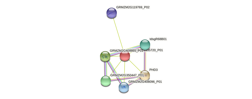 103636005 protein (Zea mays) - STRING interaction network