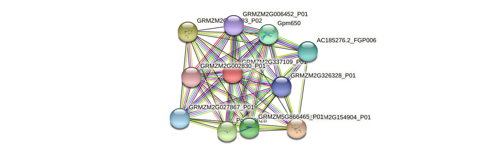 GRMZM2G337109_P01 protein (Zea mays) - STRING interaction network