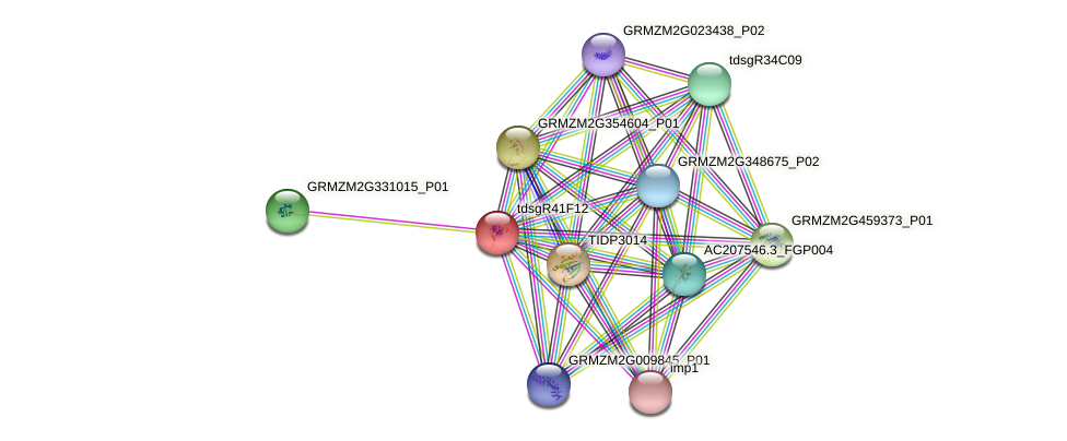 Zm.124221 protein (Zea mays) - STRING interaction network