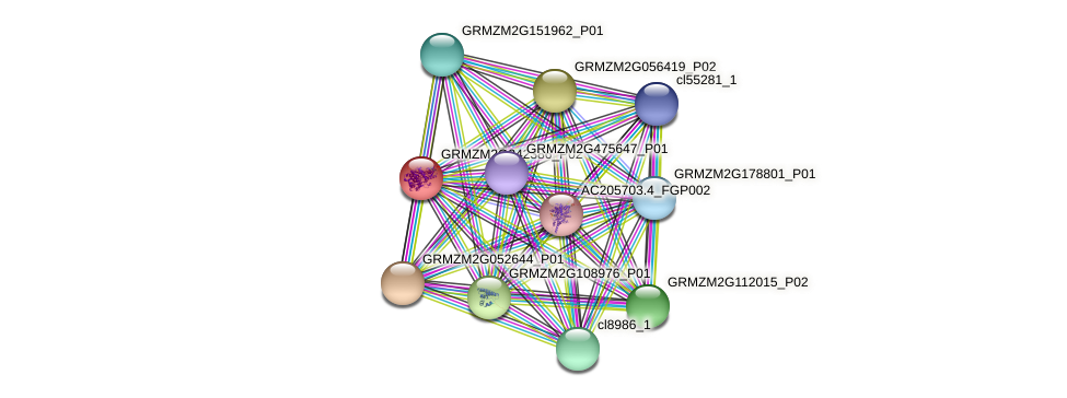 Zm.35337 protein (Zea mays) - STRING interaction network
