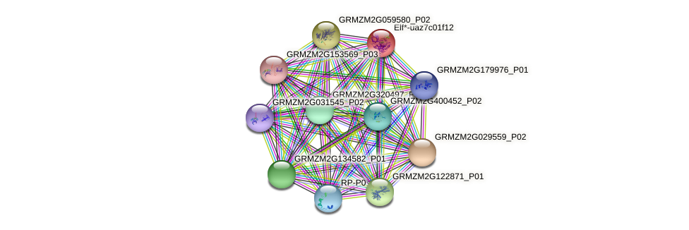 GRMZM2G343543_P03 protein (Zea mays) - STRING interaction network