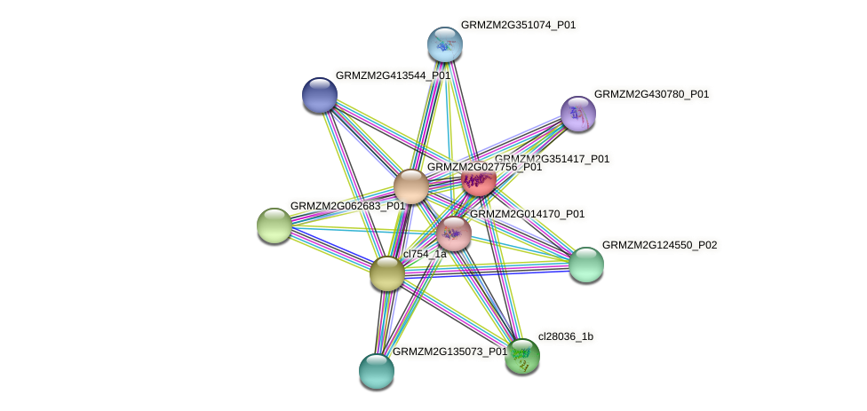 GRMZM2G351417_P01 protein (Zea mays) - STRING interaction network