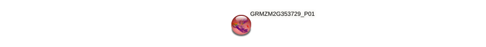 GRMZM2G353729_P01 protein (Zea mays) - STRING interaction network