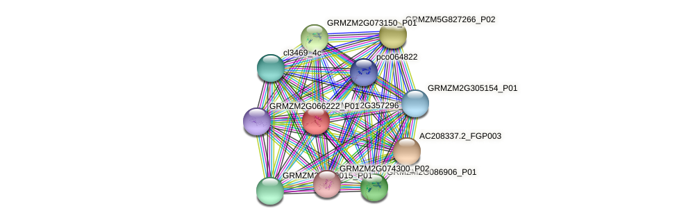 Zm.86935 protein (Zea mays) - STRING interaction network