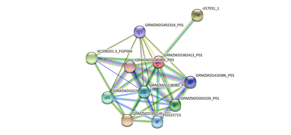 107228385 protein (Zea mays) - STRING interaction network