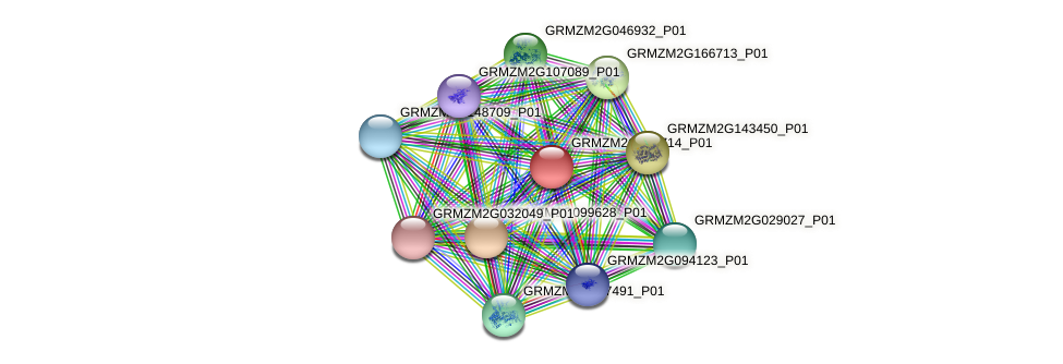 GRMZM2G386714_P01 protein (Zea mays) - STRING interaction network