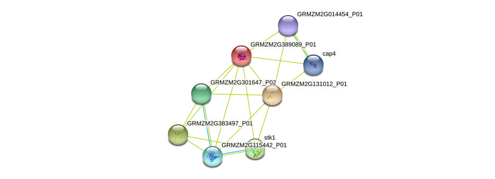Zm.133268 protein (Zea mays) - STRING interaction network