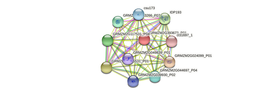 GRMZM2G393673_P01 protein (Zea mays) - STRING interaction network