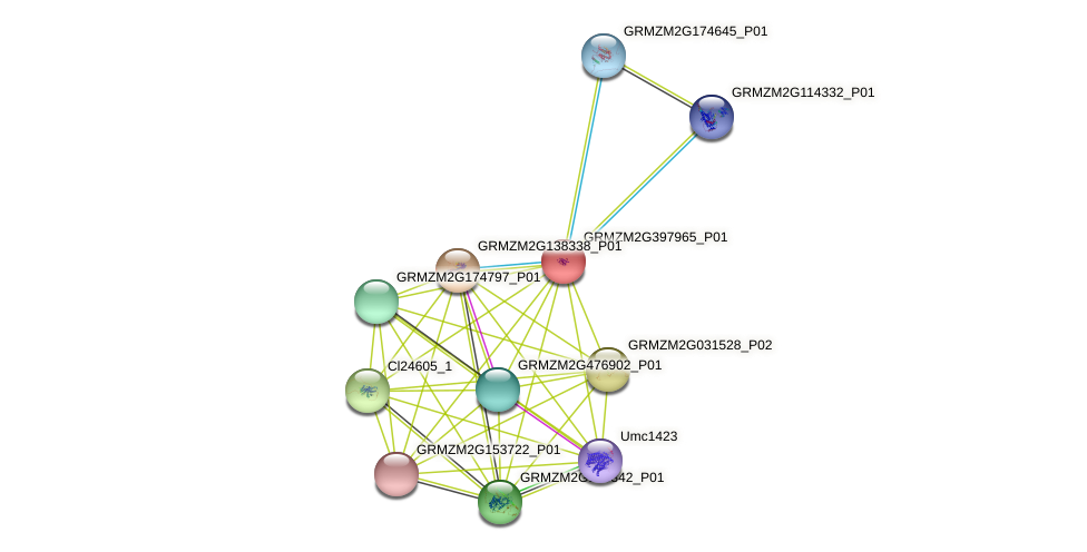 103646794 protein (Zea mays) - STRING interaction network