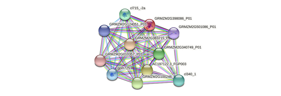 GRMZM2G398086_P01 protein (Zea mays) - STRING interaction network