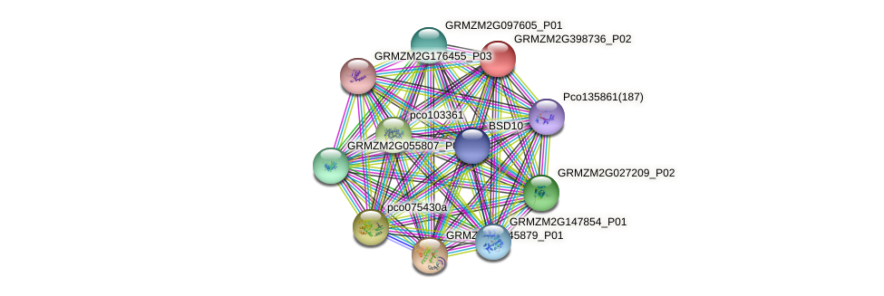 GRMZM2G398736_P02 protein (Zea mays) - STRING interaction network