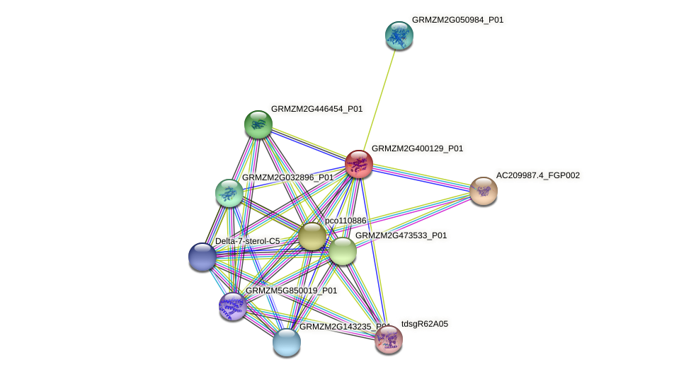 GRMZM2G400129_P01 protein (Zea mays) - STRING interaction network