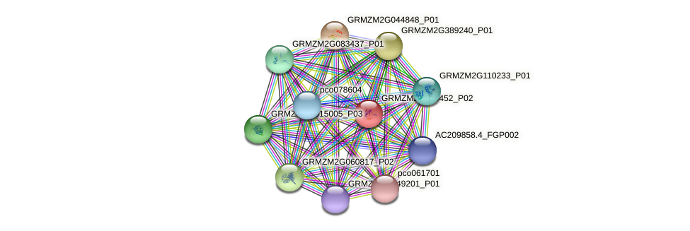 GRMZM2G400452_P02 protein (Zea mays) - STRING interaction network