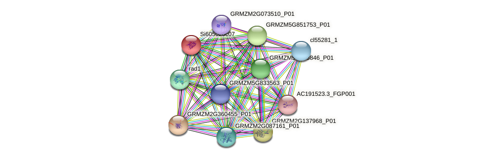 GRMZM2G404056_P03 protein (Zea mays) - STRING interaction network