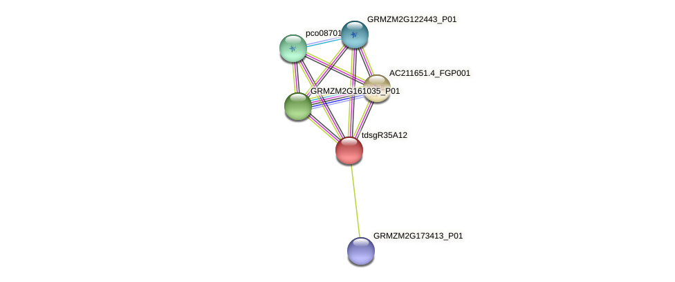 GRMZM2G405708_P01 protein (Zea mays) - STRING interaction network