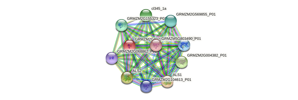 pza03459 protein (Zea mays) - STRING interaction network