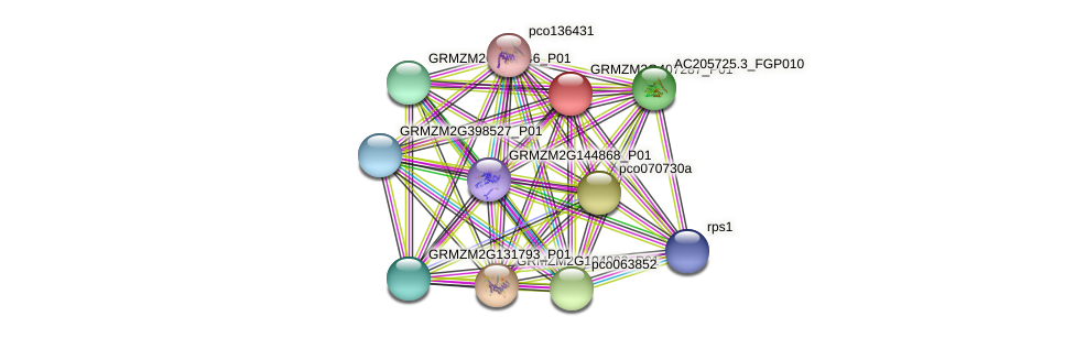 Zm.1286 protein (Zea mays) - STRING interaction network