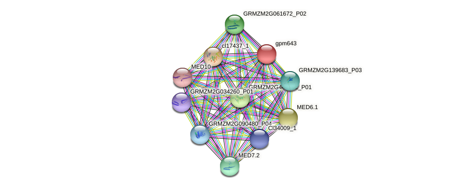 gpm643 protein (Zea mays) - STRING interaction network