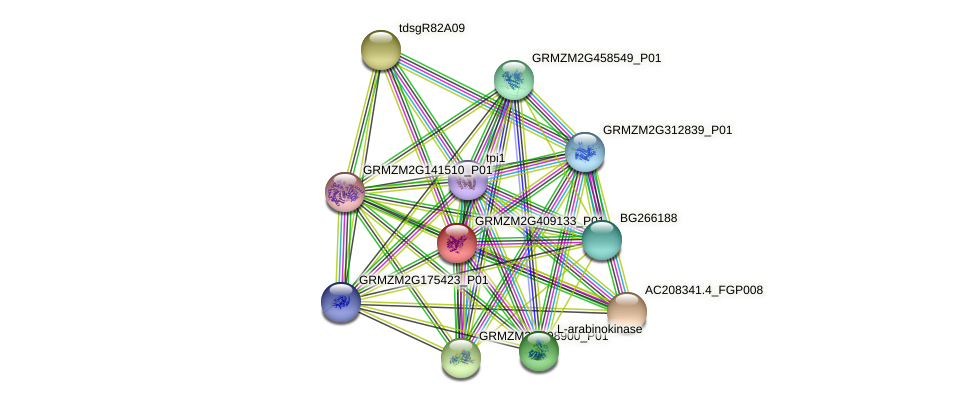 GRMZM2G409133_P01 protein (Zea mays) - STRING interaction network