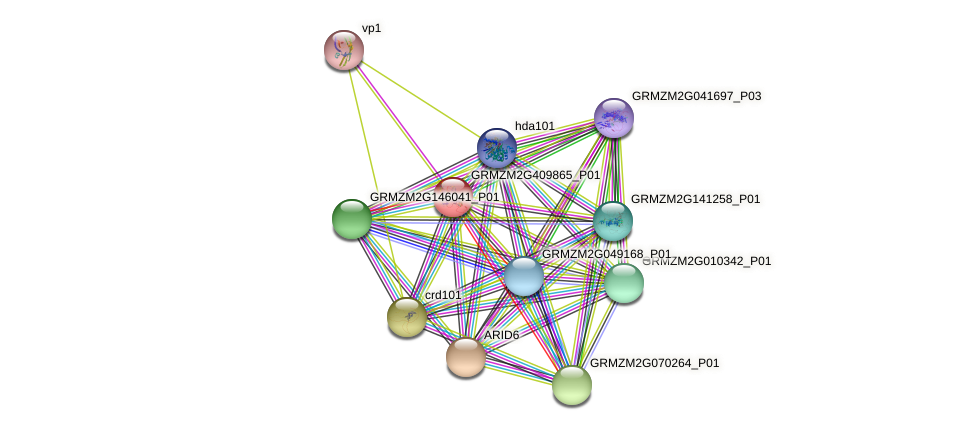 Zm.67245 protein (Zea mays) - STRING interaction network