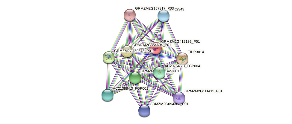GRMZM2G412136_P01 protein (Zea mays) - STRING interaction network