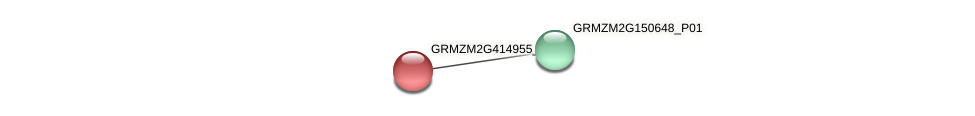 Zm.2339 protein (Zea mays) - STRING interaction network