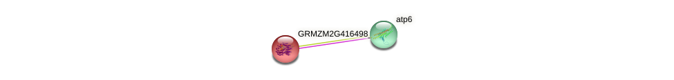 GRMZM2G416498_P01 protein (Zea mays) - STRING interaction network
