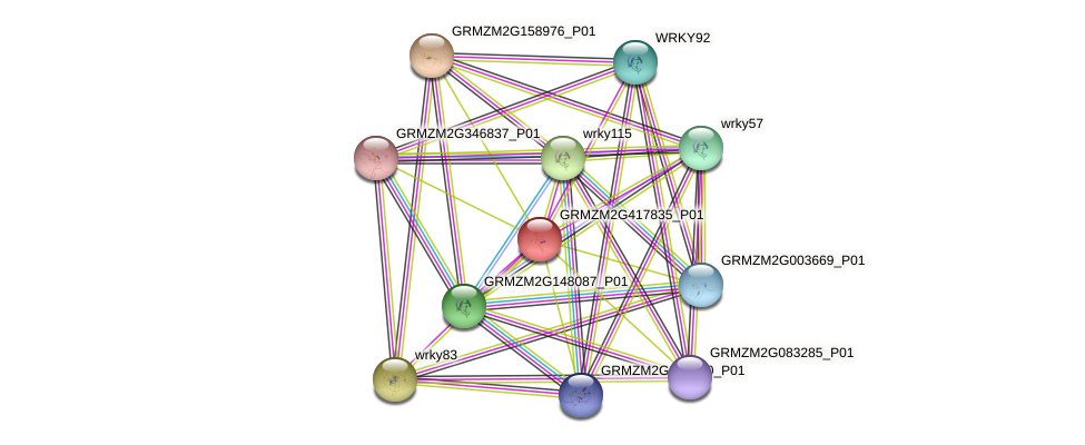 GRMZM2G417835_P01 protein (Zea mays) - STRING interaction network
