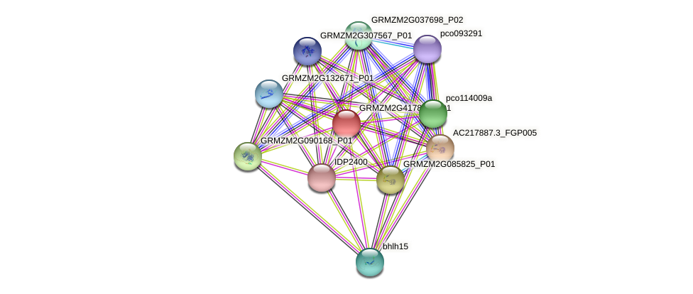 GRMZM2G417859_P01 protein (Zea mays) - STRING interaction network