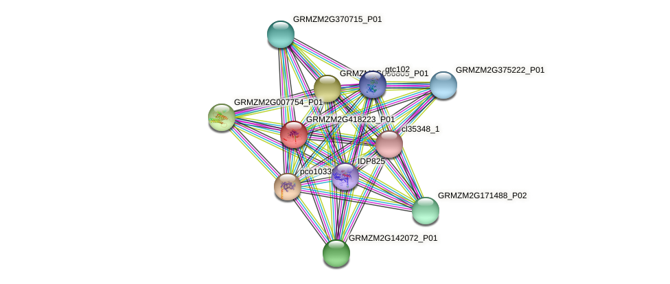 GRMZM2G418223_P01 protein (Zea mays) - STRING interaction network