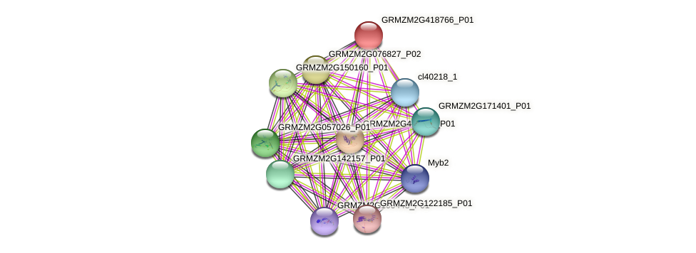 GRMZM2G418766_P01 protein (Zea mays) - STRING interaction network
