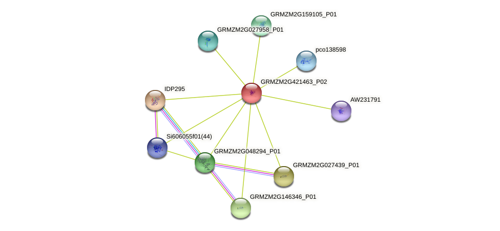 GRMZM2G421463_P02 protein (Zea mays) - STRING interaction network