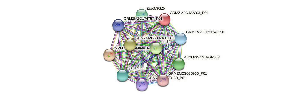 GRMZM2G422303_P01 protein (Zea mays) - STRING interaction network