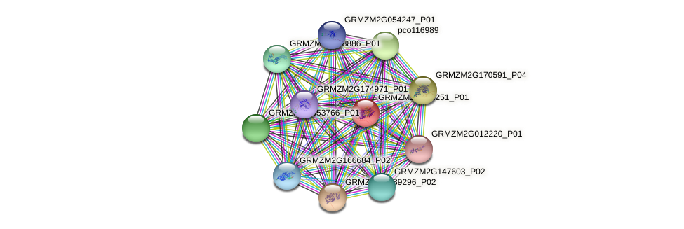 GRMZM2G431251_P01 protein (Zea mays) - STRING interaction network