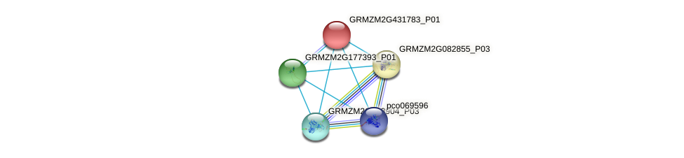 103645875 protein (Zea mays) - STRING interaction network