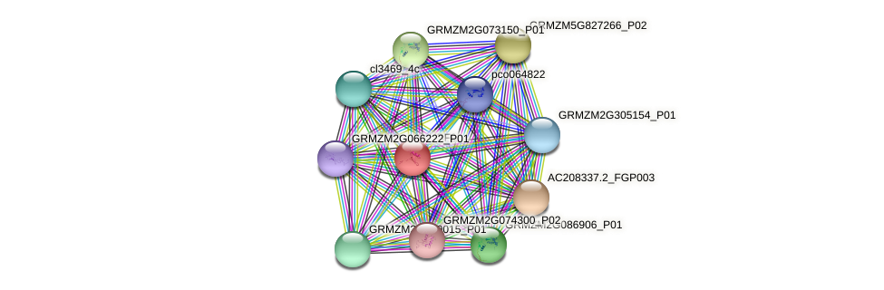 UBF9 protein (Zea mays) - STRING interaction network