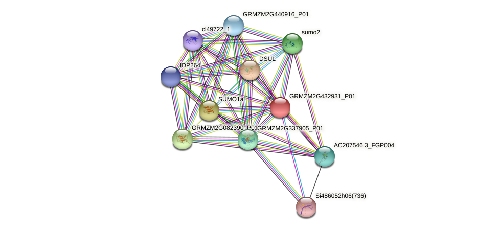 GRMZM2G432931_P01 protein (Zea mays) - STRING interaction network