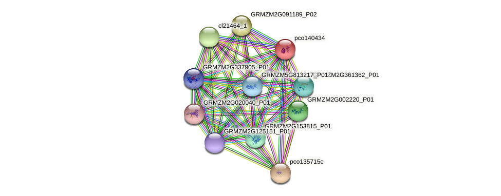 pco140434 protein (Zea mays) - STRING interaction network
