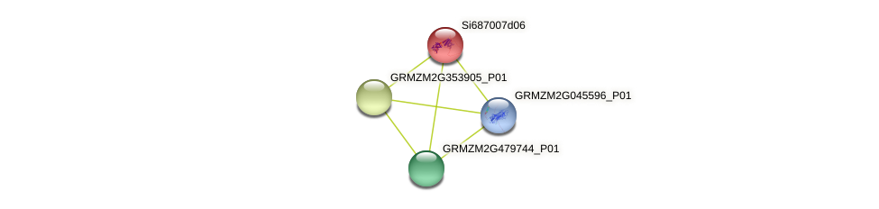 GRMZM2G447976_P01 protein (Zea mays) - STRING interaction network