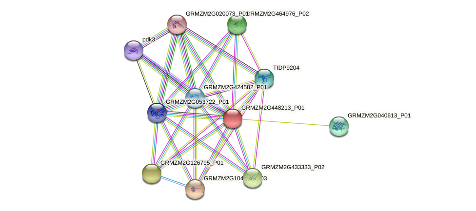 103652709 protein (Zea mays) - STRING interaction network