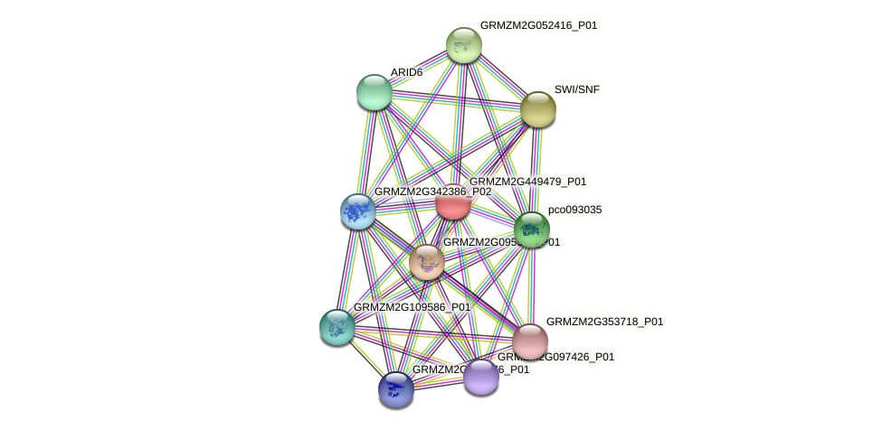GRMZM2G449479_P01 protein (Zea mays) - STRING interaction network