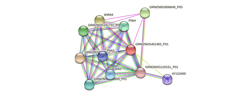 Zm.23623 protein (Zea mays) - STRING interaction network