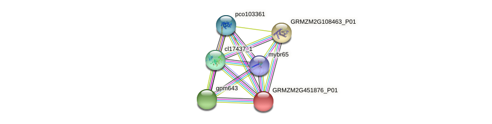 GRMZM2G451876_P01 protein (Zea mays) - STRING interaction network