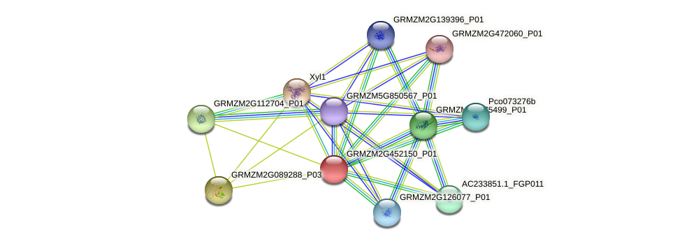 GRMZM2G452150_P01 protein (Zea mays) - STRING interaction network