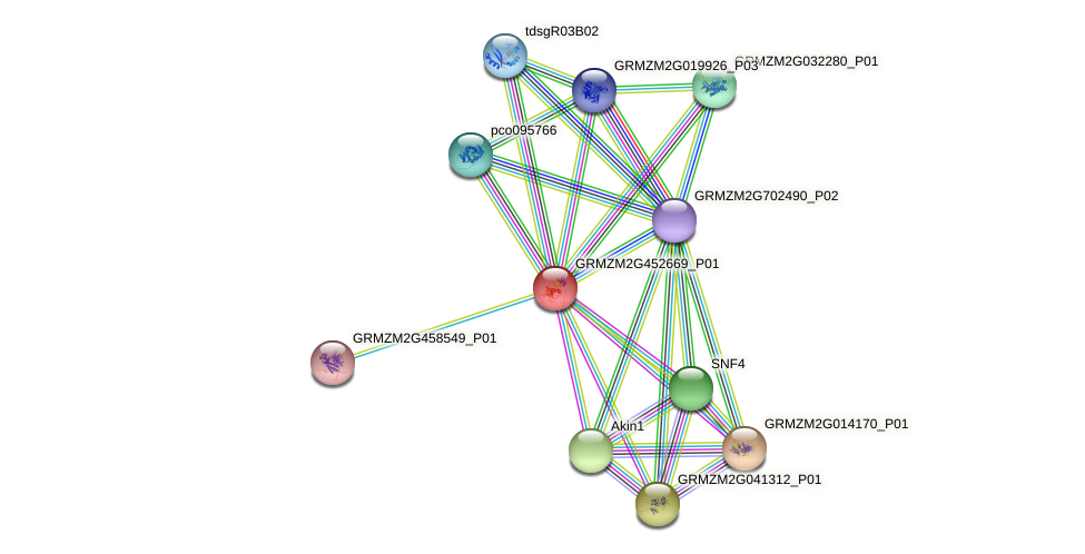 GRMZM2G452669_P01 protein (Zea mays) - STRING interaction network